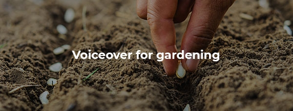 Hand, sowing seeds in home garden.